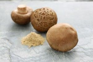 Der Vitalpilz Shiitake enthält das Polysaccharid Lentinan, welches stimulierend auf das Immunsystem wirken kann. Foto: djd/pilzshop.de